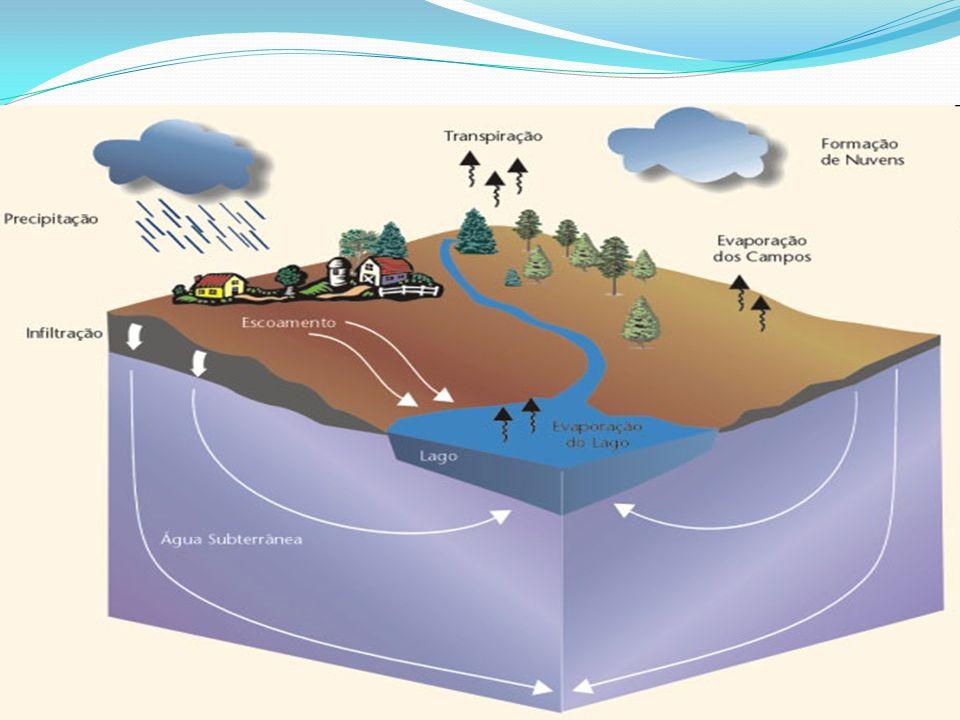 PoluenteOrigemEfeito Indicador de Poluição Método de Análise MatériaOrgânica Esgotos domésticos E alguns efluentes industriais (alimentos, papel, têxtil, etc.) Reduz oxigênio dissolvido.