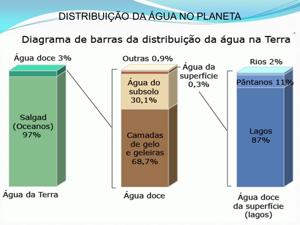 Características das zonas de autodepuração Zona de Degradação: Início ponto de lançamento dos despejos; Água turva (cor acinzentada); Precipitação de partículas lodo no leito do corpo dágua; Proliferação de bactérias (consumo de matéria orgânica); Redução da concentração de oxigênio dissolvido; Limite da 1ª zona concentração de oxigênio atinge 40% da concentração inicial; Não há odor; Presença de oxigênio não permita a decomposição aneróbia.