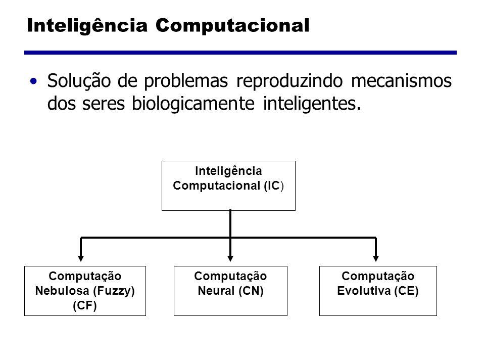 Inteligência Computacional Solução de problemas reproduzindo mecanismos dos seres biologicamente inteligentes.