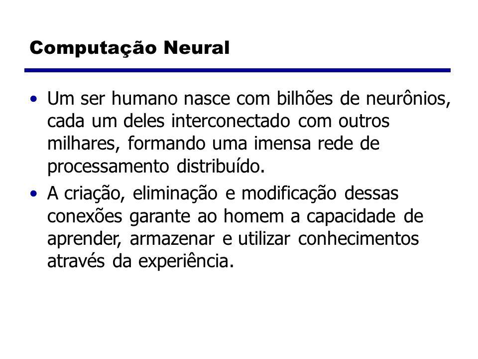 Computação Neural Um ser humano nasce com bilhões de neurônios, cada um deles interconectado com outros milhares, formando uma imensa rede de processamento distribuído.