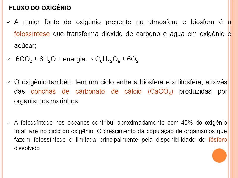 FLUXO DO OXIGÊNIO A maior fonte do oxigênio presente na atmosfera e biosfera é a fotossíntese que transforma dióxido de carbono e água em oxigênio e a