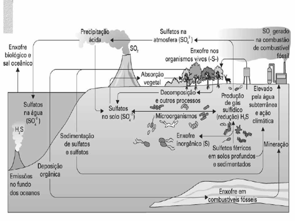 CICLO DA ÁGUA Pode definir-se ciclo hidrológico como a seqüência fechada de fenômenos pelos quais a água passa do globo terrestre para a atmosfera, na fase de vapor, e regressa àquele, nas fases líquida e sólida.