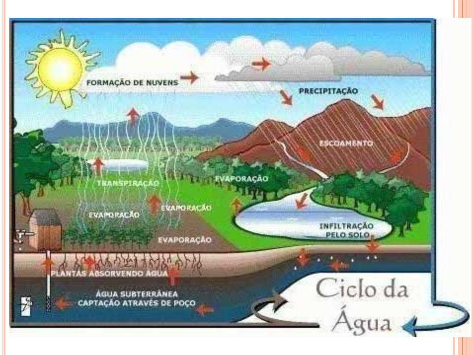 O grande problema dos recursos hídricos é a sua irregularidade no que se refere A distribuição espacial e as demandas, como mostram as figuras a seguir.