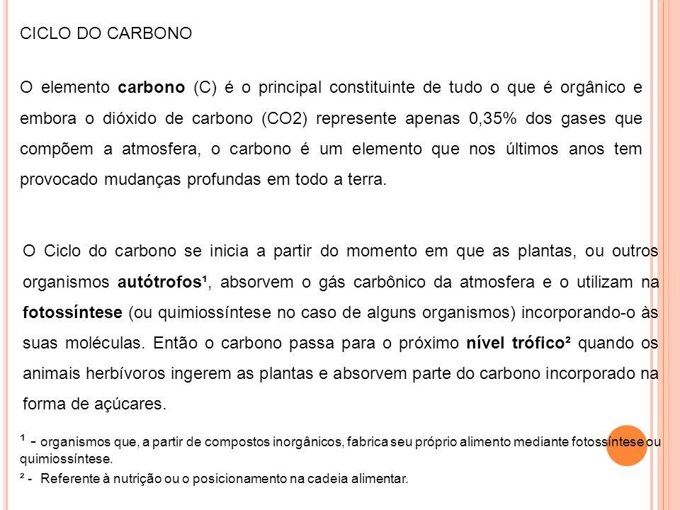O elemento carbono (C) é o principal constituinte de tudo o que é orgânico e embora o dióxido de carbono (CO2) represente apenas 0,35% dos gases que c