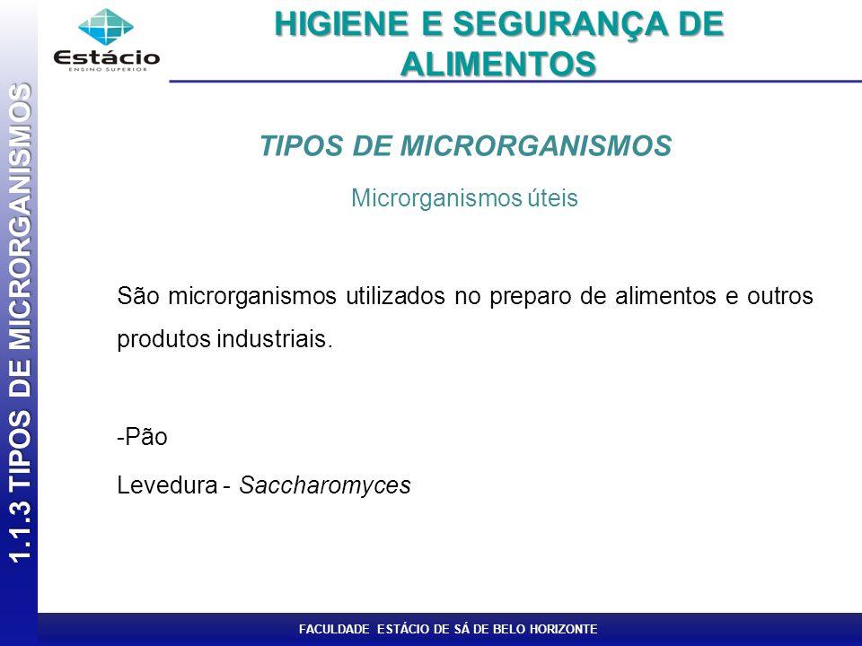 FACULDADE ESTÁCIO DE SÁ DE BELO HORIZONTE TIPOS DE MICRORGANISMOS Microrganismos úteis São microrganismos utilizados no preparo de alimentos e outros