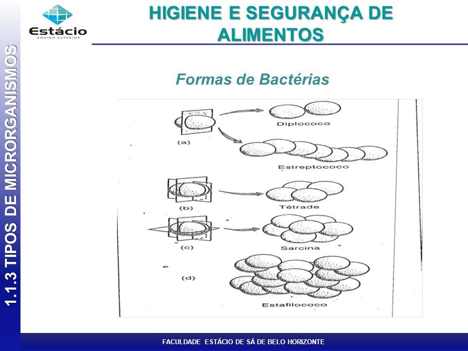 FACULDADE ESTÁCIO DE SÁ DE BELO HORIZONTE Formas de Bactérias 1.1.3 TIPOS DE MICRORGANISMOS HIGIENE E SEGURANÇA DE ALIMENTOS