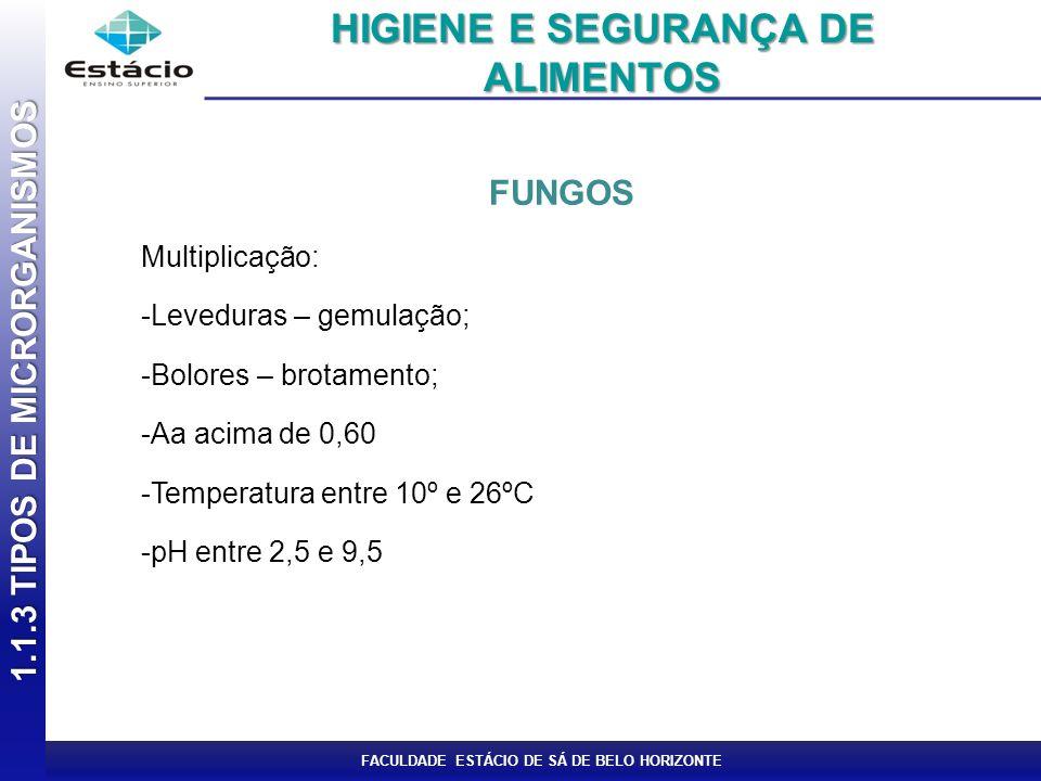 FACULDADE ESTÁCIO DE SÁ DE BELO HORIZONTE FUNGOS Multiplicação: -Leveduras – gemulação; -Bolores – brotamento; -Aa acima de 0,60 -Temperatura entre 10