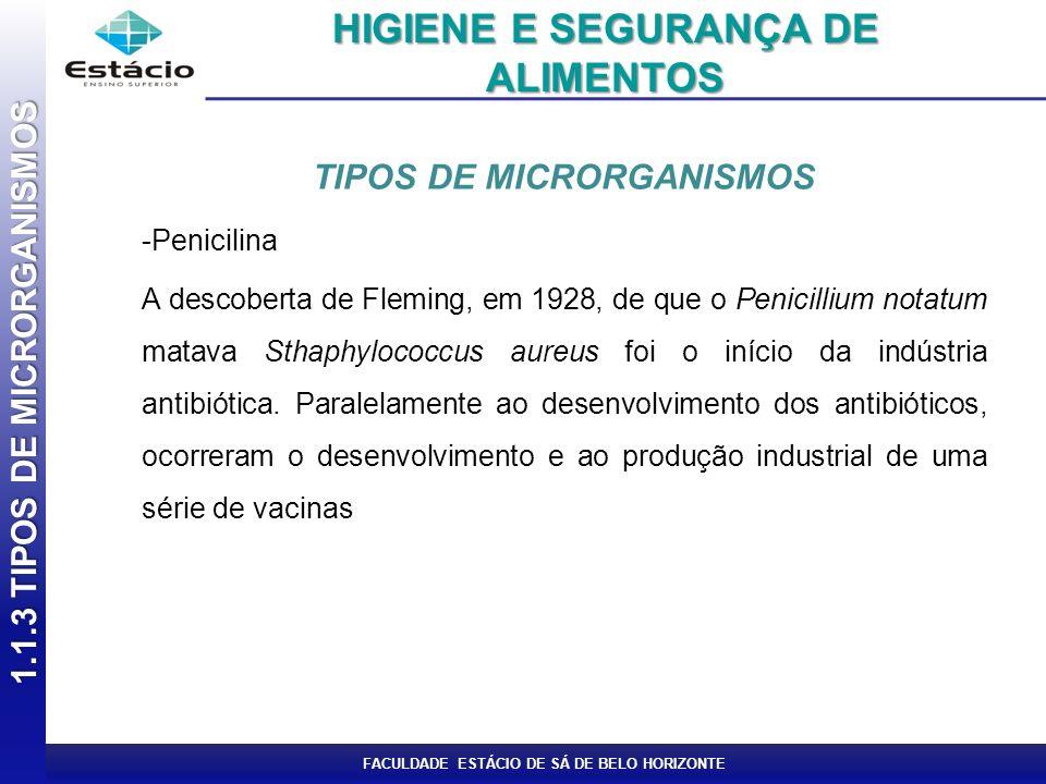 FACULDADE ESTÁCIO DE SÁ DE BELO HORIZONTE Formas de Bactérias Podem apresentar das seguintes formas: 1.1.3 TIPOS DE MICRORGANISMOS HIGIENE E SEGURANÇA DE ALIMENTOS