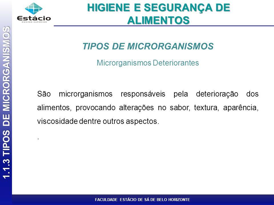 FACULDADE ESTÁCIO DE SÁ DE BELO HORIZONTE TIPOS DE MICRORGANISMOS Microrganismos Deteriorantes São microrganismos responsáveis pela deterioração dos a