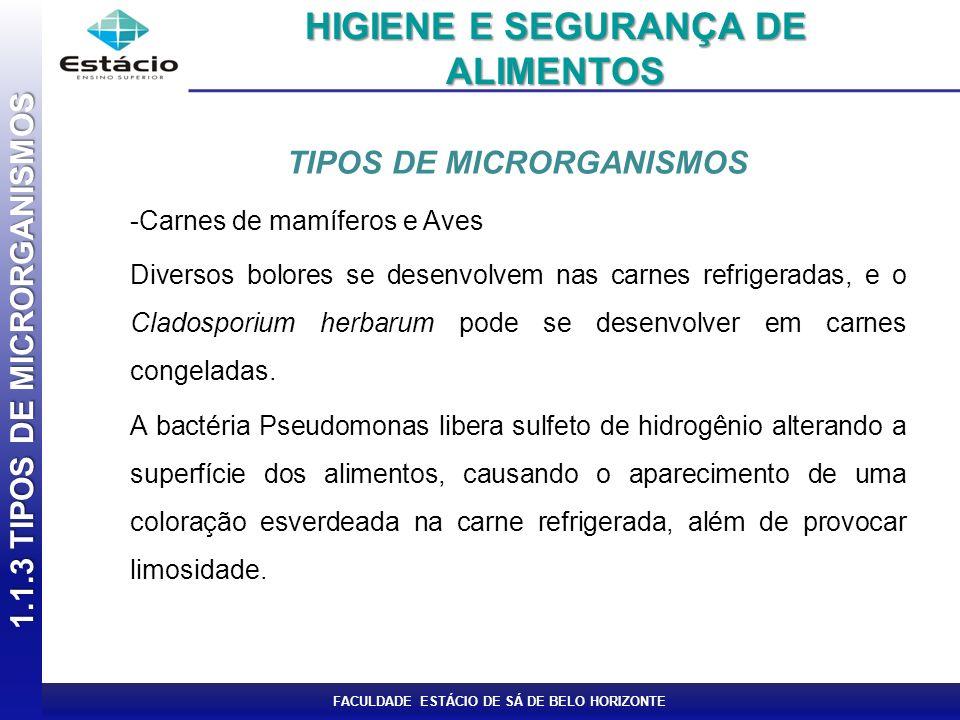 FACULDADE ESTÁCIO DE SÁ DE BELO HORIZONTE TIPOS DE MICRORGANISMOS -Peixes e Frutos do mar Halococcus e Halobacterium -Leite Escherichia coli Acinetobacter Staphylococcus aureus, 1.1.3 TIPOS DE MICRORGANISMOS HIGIENE E SEGURANÇA DE ALIMENTOS