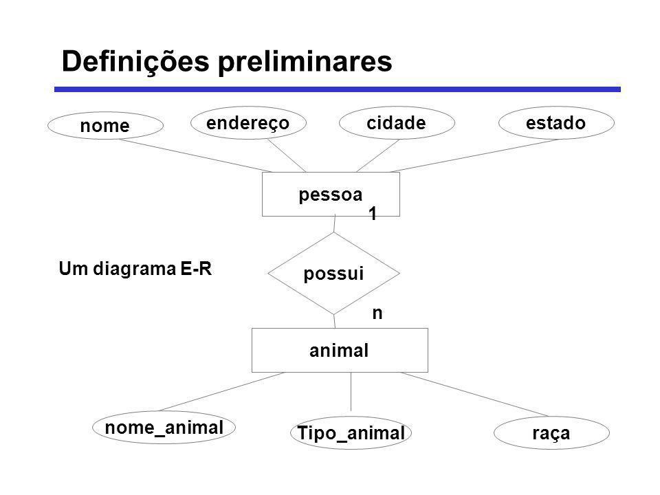 nome endereçocidadeestado pessoa possui animal Tipo_animalraça nome_animal 1 n Um diagrama E-R Definições preliminares