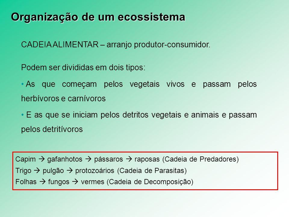 CADEIA ALIMENTAR – arranjo produtor-consumidor. Podem ser divididas em dois tipos: As que começam pelos vegetais vivos e passam pelos herbívoros e car