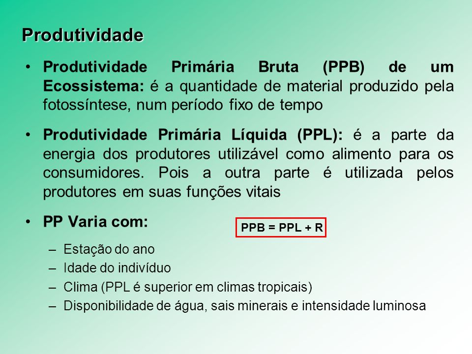 Produtividade Produtividade Primária Bruta (PPB) de um Ecossistema: é a quantidade de material produzido pela fotossíntese, num período fixo de tempo