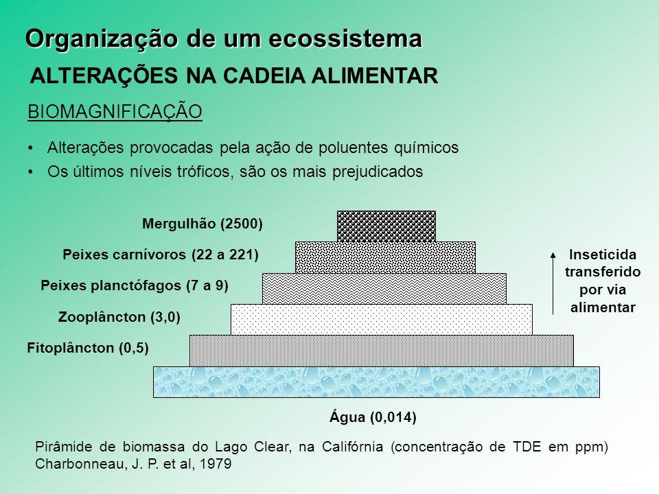 ALTERAÇÕES NA CADEIA ALIMENTAR BIOMAGNIFICAÇÃO Alterações provocadas pela ação de poluentes químicos Os últimos níveis tróficos, são os mais prejudica
