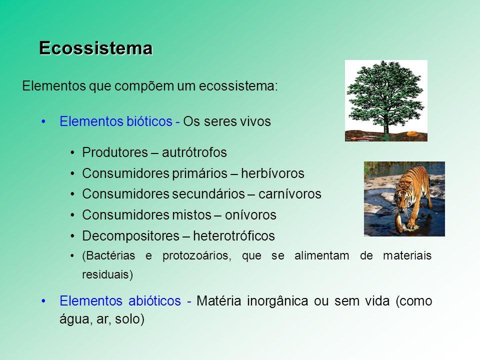Produtividade Estágio de sucessão ecológica PB/R – Relação entre Comunidade Clímax ou Sucessão Ecológica PB/R = 1,0 (Ecossistema Maduro) – toda produção primária líquida de um certo intervalo de tempo é consumida pela fauna em intervalo de tempo igual (PL = 0) PB/R > 1,0 (Ecossistema Sucessional) – apenas parte da produção primária líquida é consumida, ou seja, fica saldo de energia para manter novos consumidores (PL > 0) Diferenças entre o ecossistema sucessional e maduro CaracterísticasEcossistema sucessionalEcossistema maduro Diversidade biológicaBaixaAlta Biomassa totalPequenaGrande Número de relaçõesPequenoGrande Teia alimentarSimplesComplexa Relação produção/consumoMaior que 1Menor que 1 EstabilidadeInstávelEstável Resistência aos distúrbios externosBaixaAlta