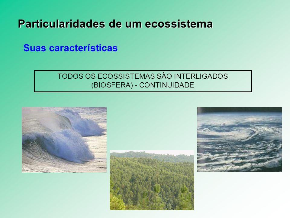 Suas características OS ECOSSITEMAS SÃO ABERTOS E SE MANTÊM ATRAVÉS DO FLUXO DE ENERGIA SOLAR – SISTEMA ABERTO PRIMEIRA LEI DA TERMODINÂMICA (OU LEI DA CONSERVAÇÃO DA ENERGIA) A energia pode se transformar de uma forma em outra, mas não pode ser criada ou destruída SEGUNDA LEI DA TERMODINÂMICA Todo o processo de transformação de energia dá-se a partir de uma maneira mais nobre para uma menos nobre, ou de menor qualidade Particularidades de um ecossistema