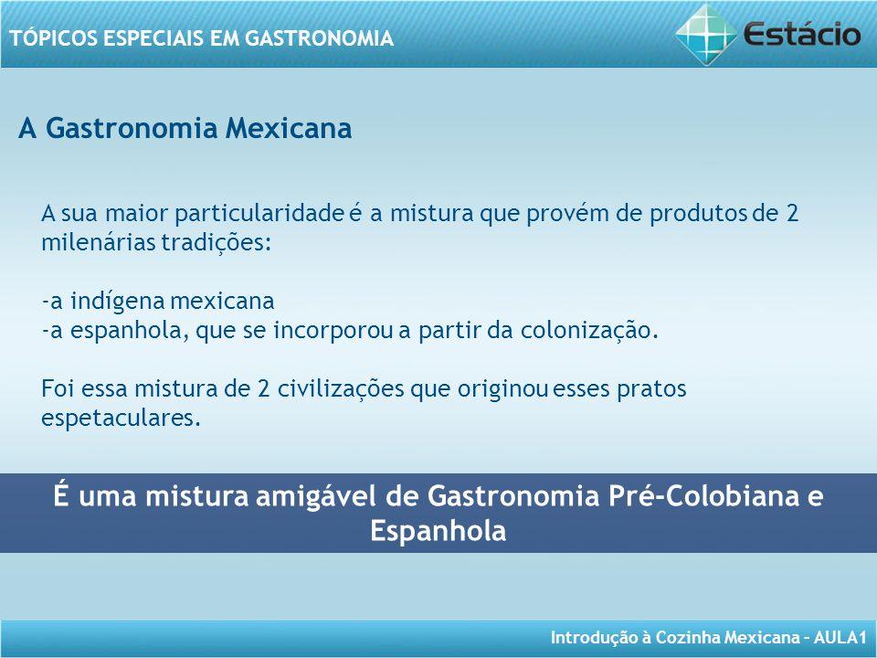 Introdução à Cozinha Mexicana – AULA1 TÓPICOS ESPECIAIS EM GASTRONOMIA A Gastronomia Mexicana É uma mistura amigável de Gastronomia Pré-Colobiana e Es