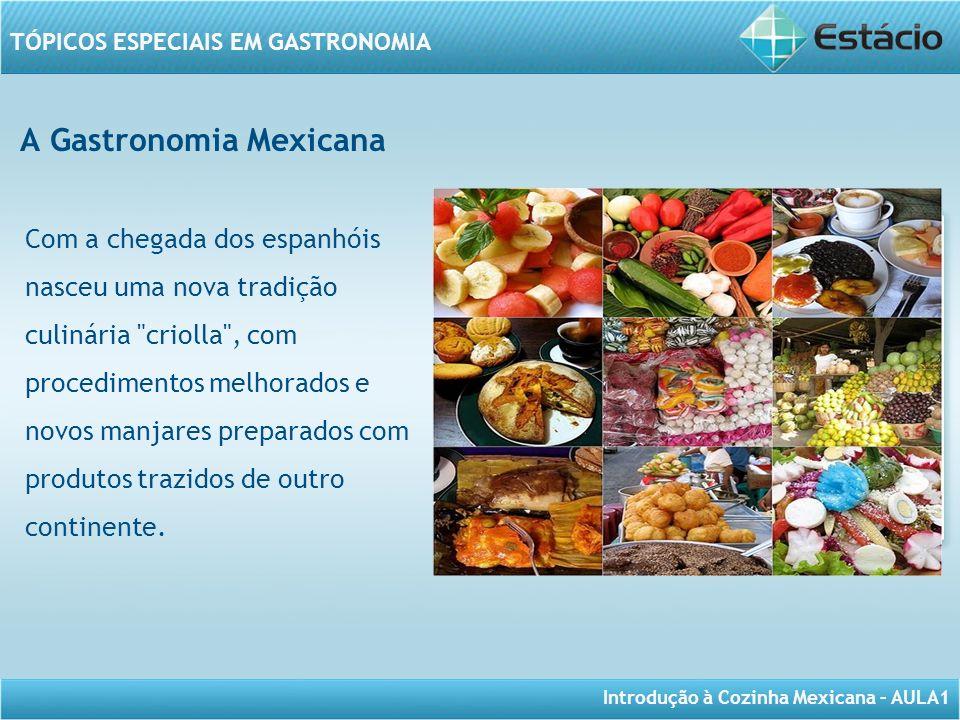 Introdução à Cozinha Mexicana – AULA1 TÓPICOS ESPECIAIS EM GASTRONOMIA A Gastronomia Mexicana Com a chegada dos espanhóis nasceu uma nova tradição cul