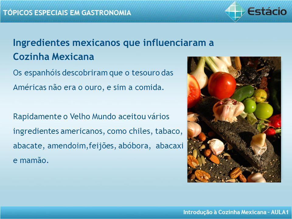 Introdução à Cozinha Mexicana – AULA1 TÓPICOS ESPECIAIS EM GASTRONOMIA Ingredientes mexicanos que influenciaram a Cozinha Mexicana Os espanhóis descob