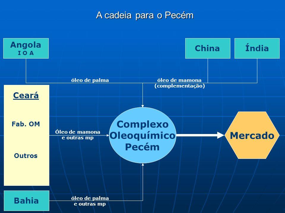 Complexo Oleoquímico Pecém Angola I O A ChinaÍndia Bahia Ceará Fab.