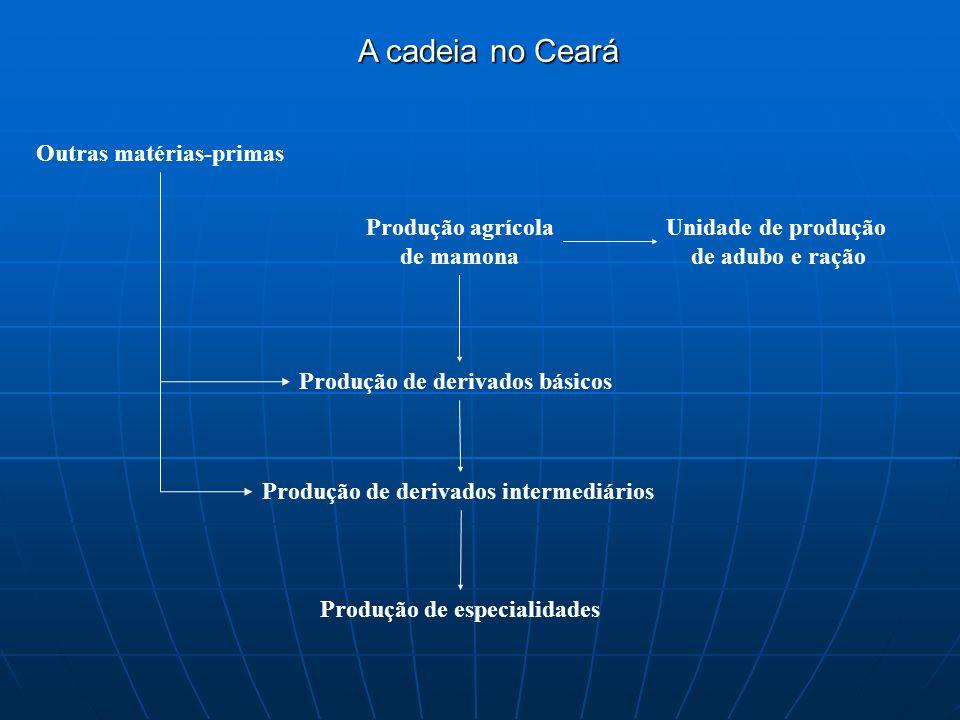 A cadeia no Ceará Produção agrícola de mamona Unidade de produção de adubo e ração Produção de derivados básicos Produção de derivados intermediários Produção de especialidades Outras matérias-primas