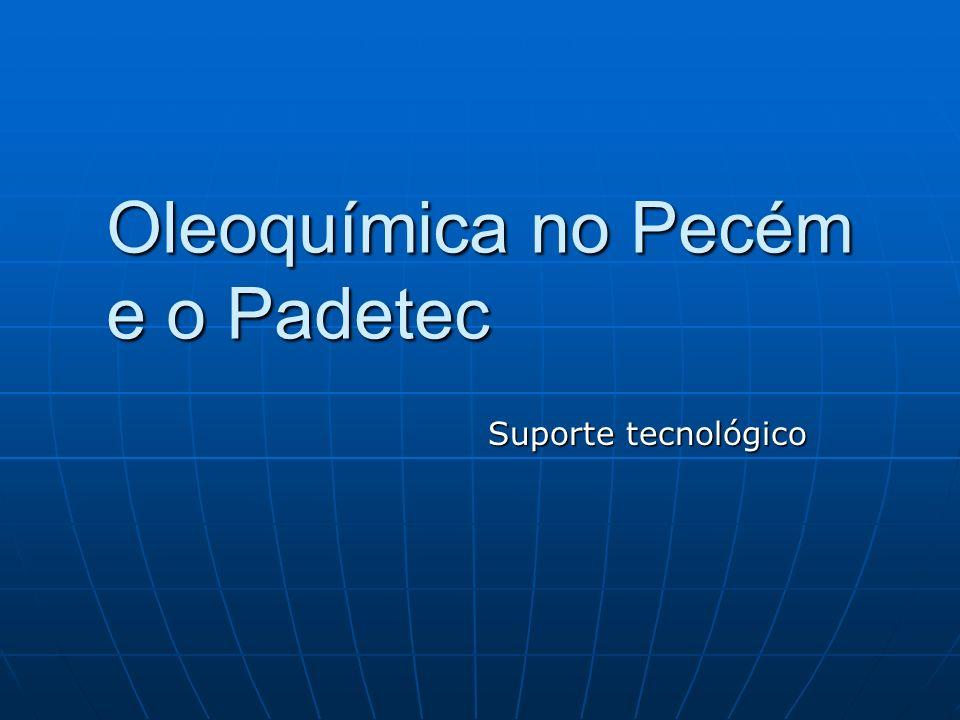 Oleoquímica no Pecém e o Padetec Suporte tecnológico