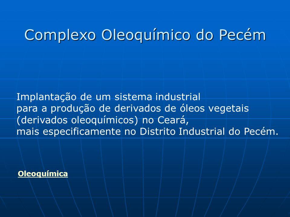 Implantação de um sistema industrial para a produção de derivados de óleos vegetais (derivados oleoquímicos) no Ceará, mais especificamente no Distrito Industrial do Pecém.
