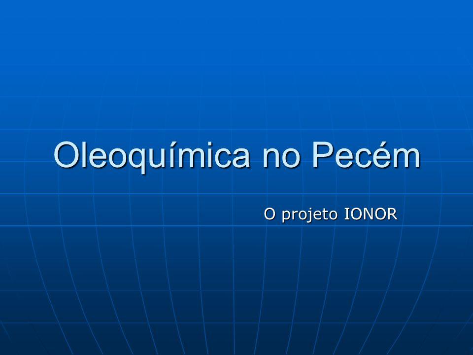 Oleoquímica no Pecém O projeto IONOR