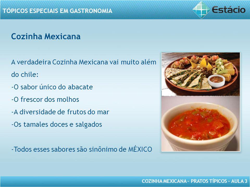 COZINHA MEXICANA – PRATOS TÍPICOS – AULA 3 TÓPICOS ESPECIAIS EM GASTRONOMIA Cozinha Mexicana A Cozinha Mexicana é tradicional e moderna, se adapta ao mundo contemporâneo sem perder suas raízes.