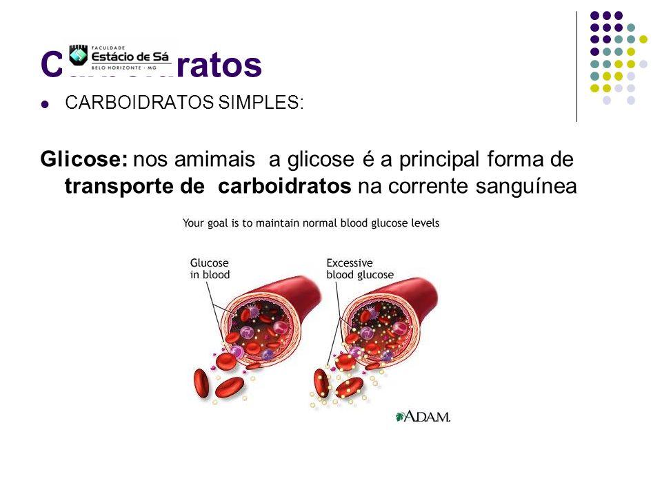 Carboidratos CARBOIDRATOS SIMPLES: