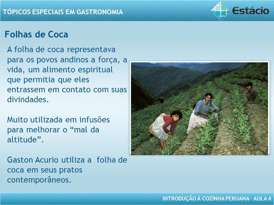 INTRODUÇÃO À COZINHA PERUANA – AULA 4 TÓPICOS ESPECIAIS EM GASTRONOMIA Folhas de Coca MODELO DE MOLDURA PARA IMAGEM COM ORIENTAÇÃO HORIZONTAL A folha