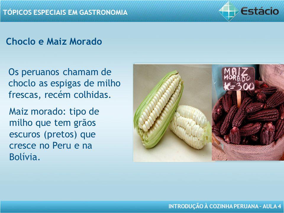 INTRODUÇÃO À COZINHA PERUANA – AULA 4 TÓPICOS ESPECIAIS EM GASTRONOMIA Choclo e Maiz Morado MODELO DE MOLDURA PARA IMAGEM COM ORIENTAÇÃO HORIZONTAL Os peruanos chamam de choclo as espigas de milho frescas, recém colhidas.