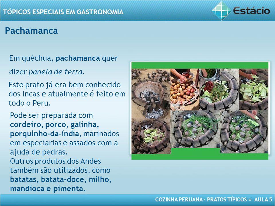 COZINHA PERUANA – PRATOS TÍPICOS = AULA 5 TÓPICOS ESPECIAIS EM GASTRONOMIA Pachamanca MODELO DE MOLDURA PARA IMAGEM COM ORIENTAÇÃO HORIZONTAL Em quéchua, pachamanca quer dizer panela de terra.