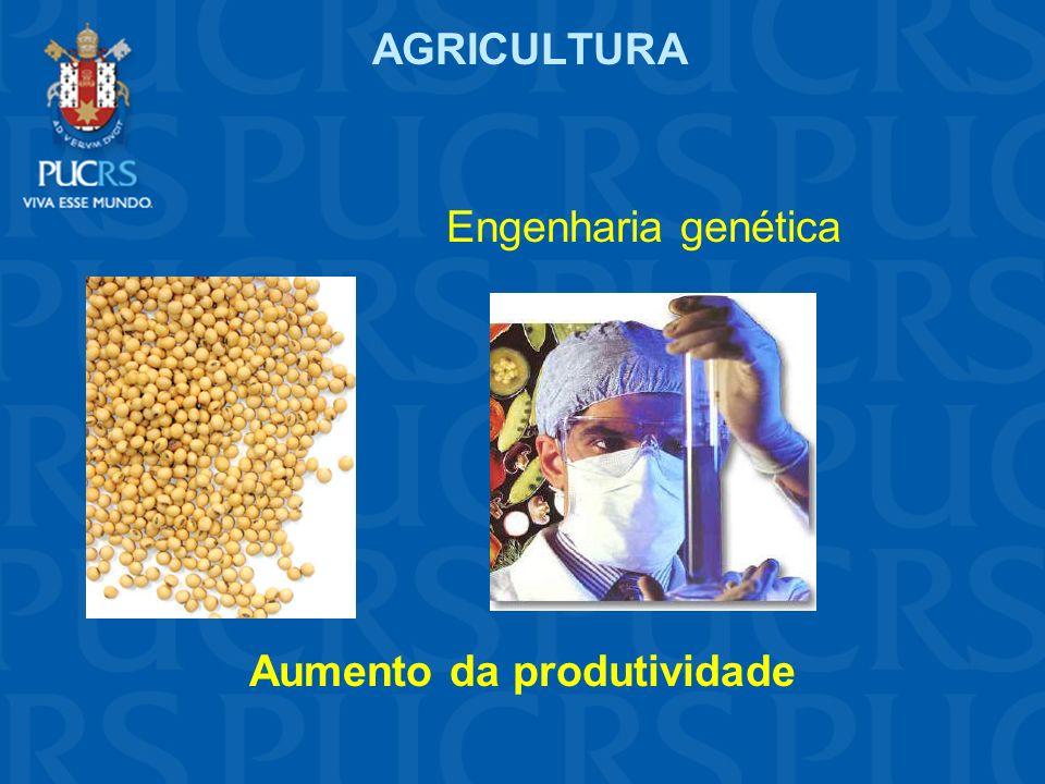 AGRICULTURA Engenharia genética Aumento da produtividade