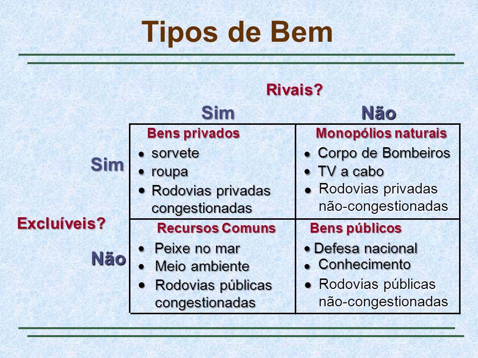 Tipos de Bem Rivais.