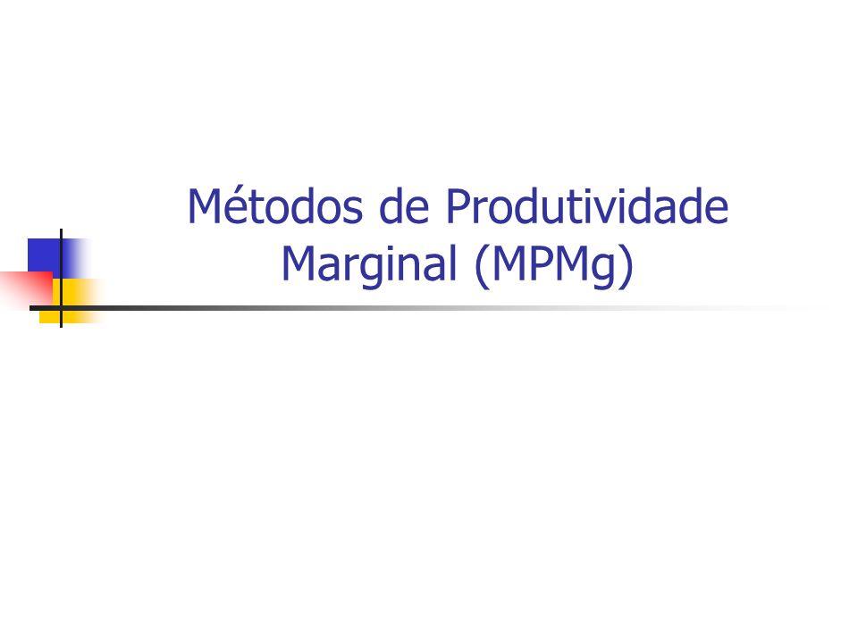 Métodos de Produtividade Marginal (MPMg)