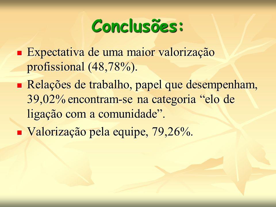 Conclusões: Expectativa de uma maior valorização profissional (48,78%). Expectativa de uma maior valorização profissional (48,78%). Relações de trabal