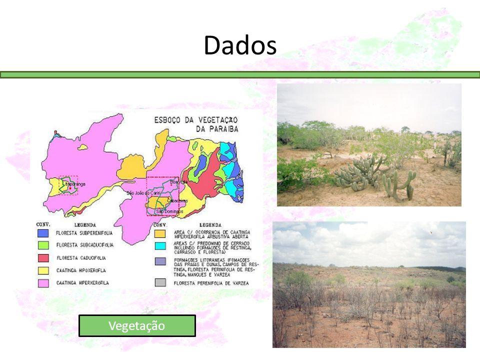 Dados Vegetação