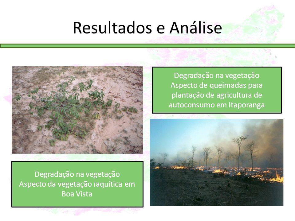 Resultados e Análise Degradação na vegetação Aspecto da vegetação raquítica em Boa Vista Degradação na vegetação Aspecto de queimadas para plantação de agricultura de autoconsumo em Itaporanga