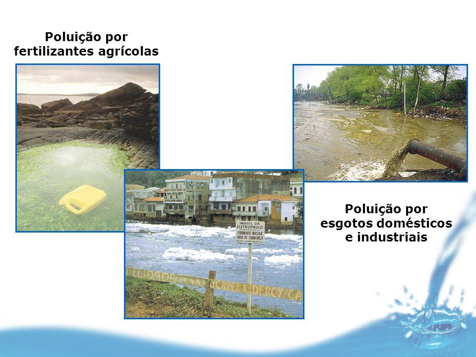 Poluição por fertilizantes agrícolas Poluição por esgotos domésticos e industriais