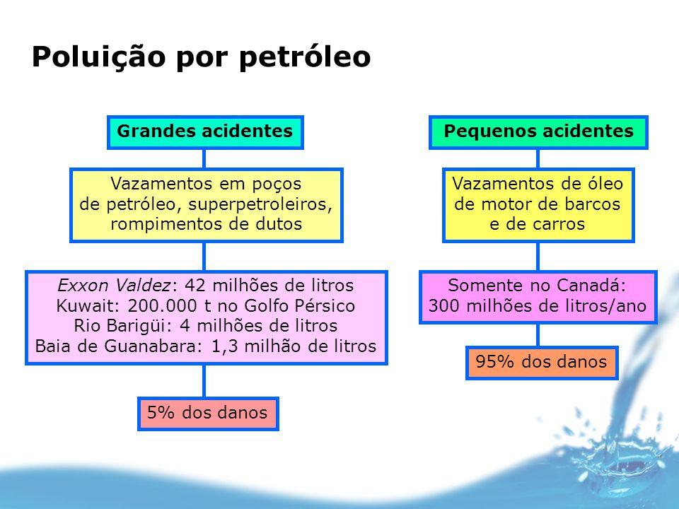 Poluição por petróleo Grandes acidentes Vazamentos em poços de petróleo, superpetroleiros, rompimentos de dutos Exxon Valdez: 42 milhões de litros Kuw