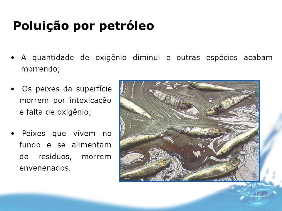 Poluição por petróleo A quantidade de oxigênio diminui e outras espécies acabam morrendo; Os peixes da superfície morrem por intoxicação e falta de ox