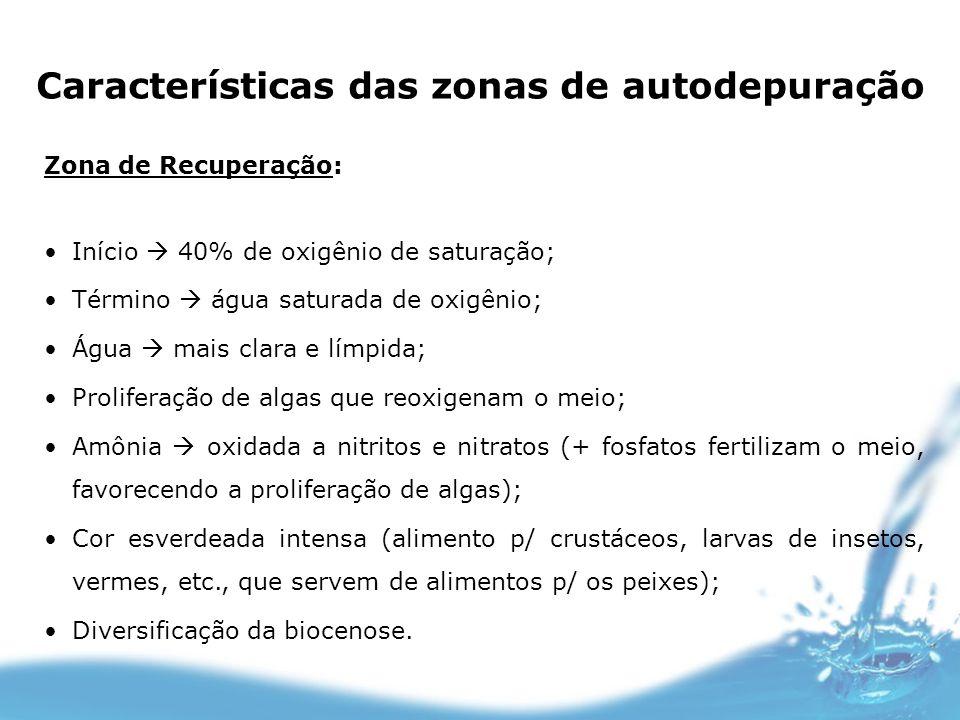 Características das zonas de autodepuração Zona de Recuperação: Início 40% de oxigênio de saturação; Término água saturada de oxigênio; Água mais clar