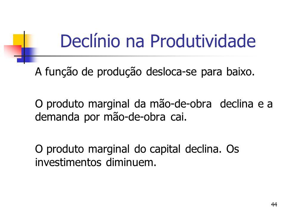 44 Declínio na Produtividade A função de produção desloca-se para baixo. O produto marginal da mão-de-obra declina e a demanda por mão-de-obra cai. O