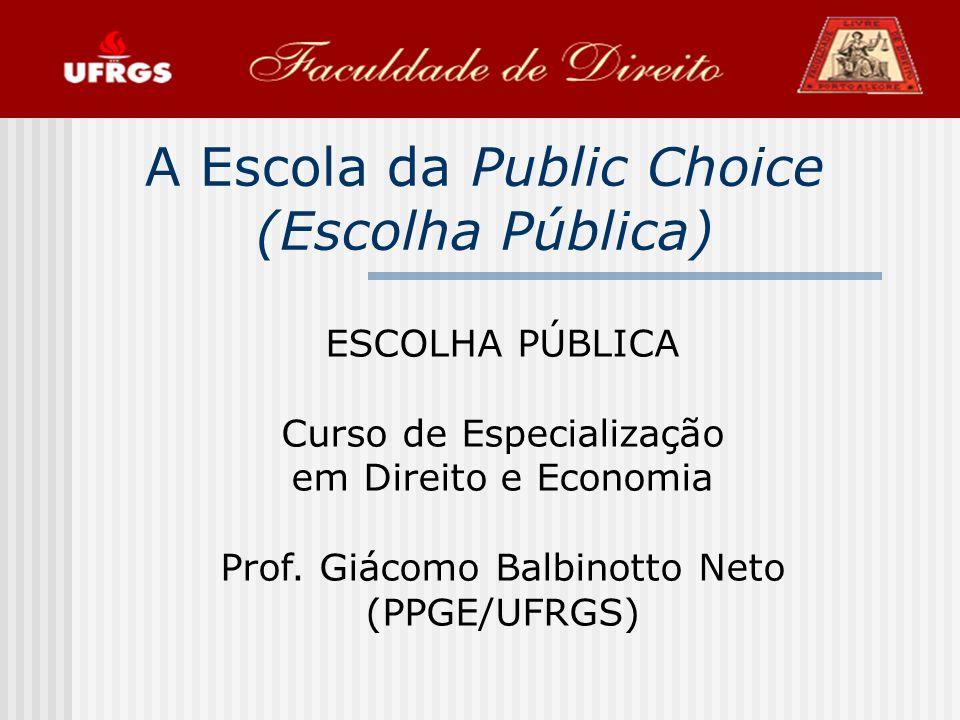 2 Definição A teoria da escolha pública (Public Choice), é o estudo dos processos de decisão política numa democracia, utilizando o instrumental analítico da economia, fundamentalmente os conceitos de comportamento racional e auto-interesse que definem o homo-economicus.