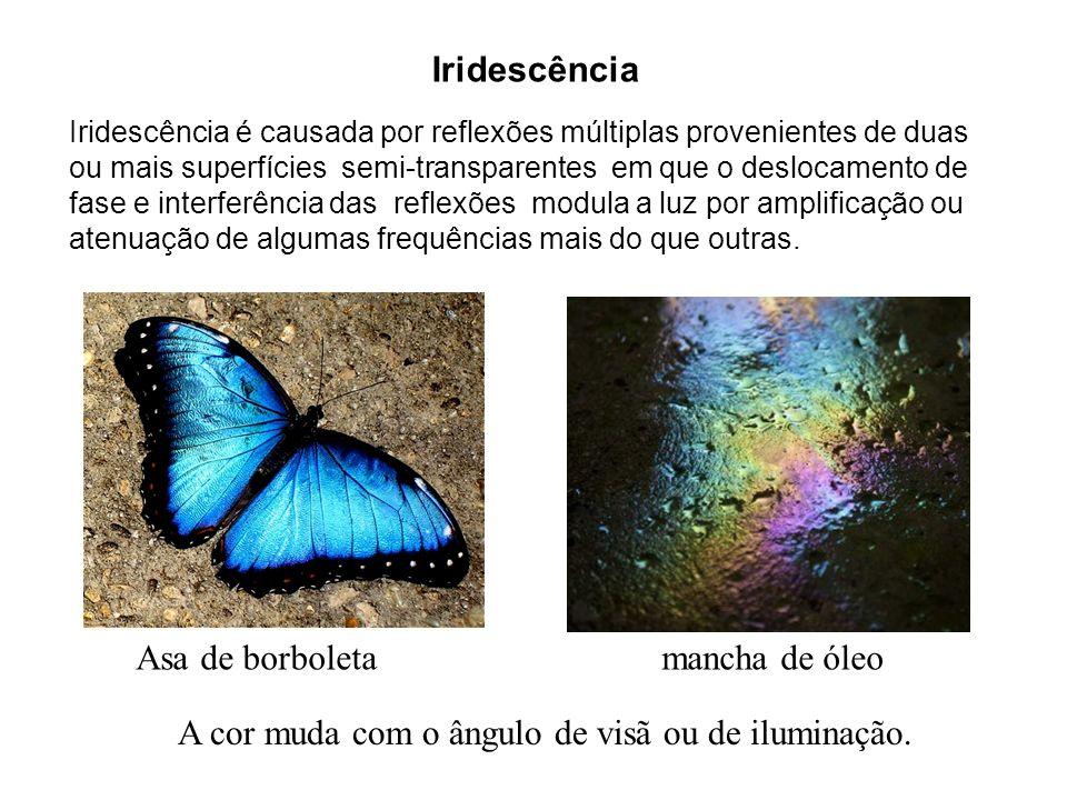 Iridescência Asa de borboleta mancha de óleo Iridescência é causada por reflexões múltiplas provenientes de duas ou mais superfícies semi-transparente