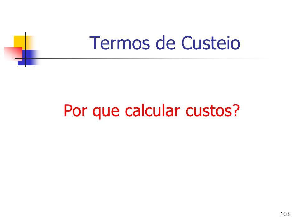 103 Termos de Custeio Por que calcular custos?