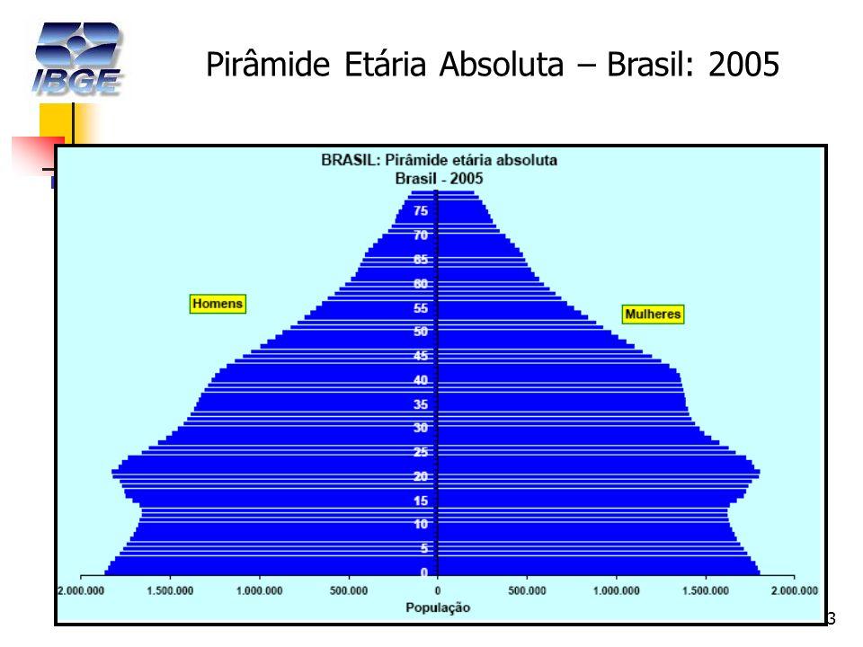 13 Pirâmide Etária Absoluta – Brasil: 2005