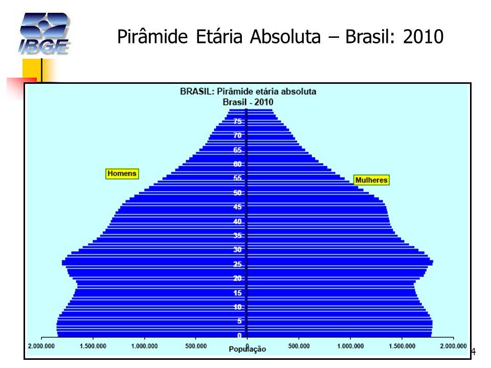 14 Pirâmide Etária Absoluta – Brasil: 2010