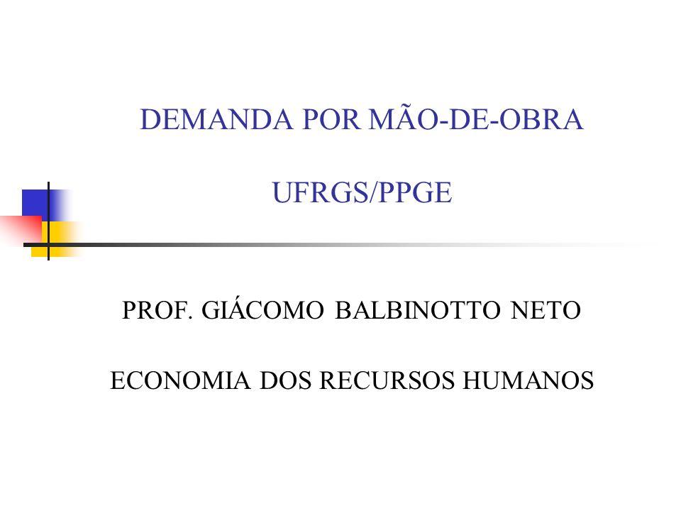 DEMANDA POR MÃO-DE-OBRA UFRGS/PPGE PROF. GIÁCOMO BALBINOTTO NETO ECONOMIA DOS RECURSOS HUMANOS